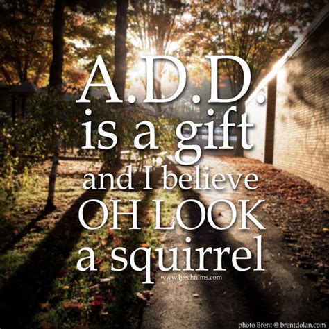 Add Memes - adhd squirrel meme www pixshark com images galleries