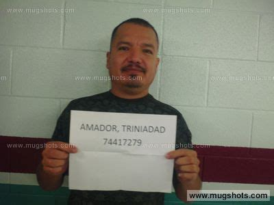 Amador County Court Records Amador Mugshot Amador Arrest Burnet