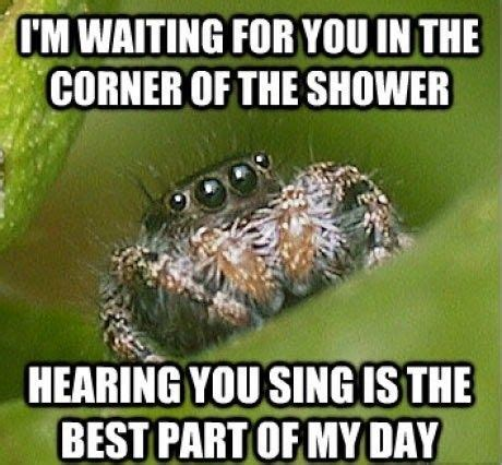 Shower Spider Meme - got any irrational fears oro jackson