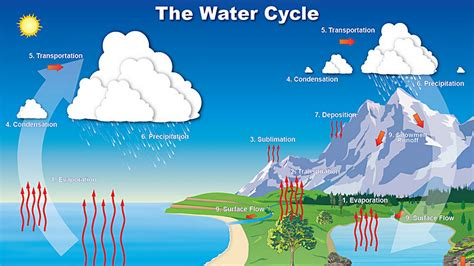 water cycle diagram the water cycle diagrams diagram site