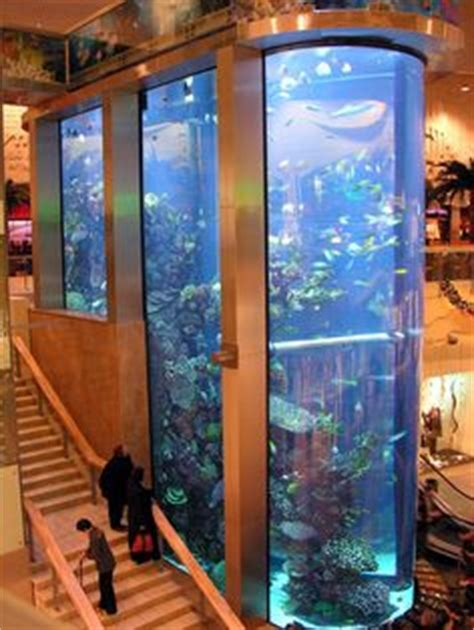 home aquariums on aquarium fish tanks and