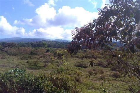 häuser zu verkaufen scout24 zu verkaufen 10 ha ha ebene farm an top lage nahe der