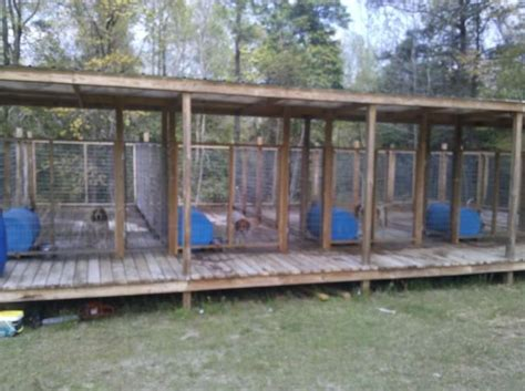 backyard dog pens raised dog kennels images reverse search