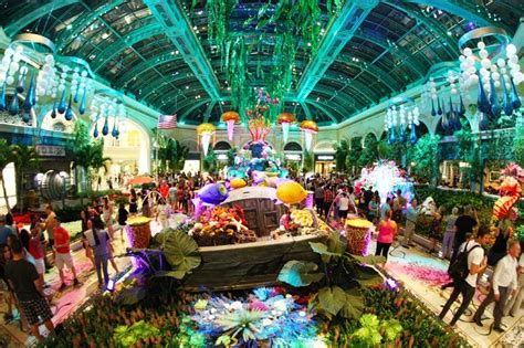 bellagio conservatory unveils undersea display  summer