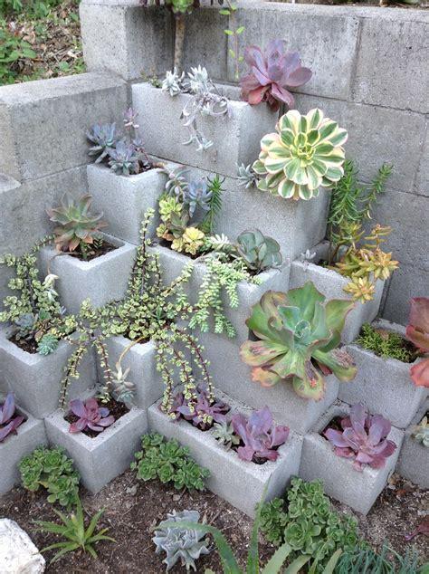 Succulent Garden Ideas Succulent Gardens