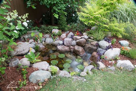 Garden Pond Kits by Diy Backyard Pond Kits Aquascape Inc
