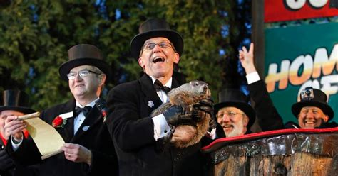 groundhog day new york groundhog day photos groundhog day 2015 ny daily news