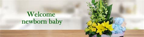 New Baby Flowers by Celebrate With New Baby Flowers Fast Delivery