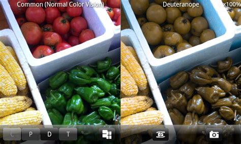 color blindness simulator chromatic vision simulator android apps on google play