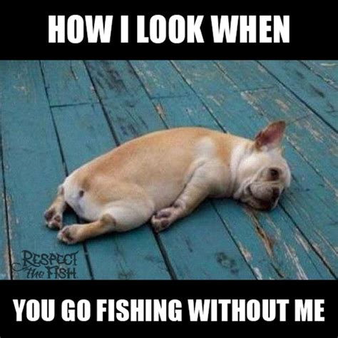 Funny Fish Memes - when you go fishing without me fish fly fishing and