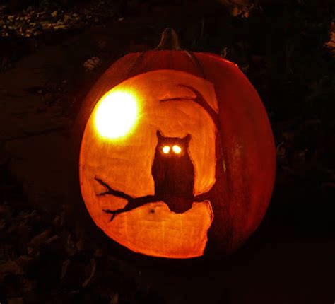 easy owl pumpkin related keywords suggestions easy owl