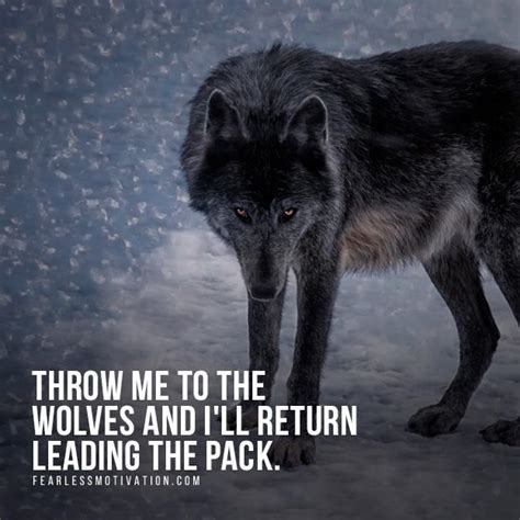 Wolf Wish We Came In Peace 24 best images about wolf quotes motivational wolf quote