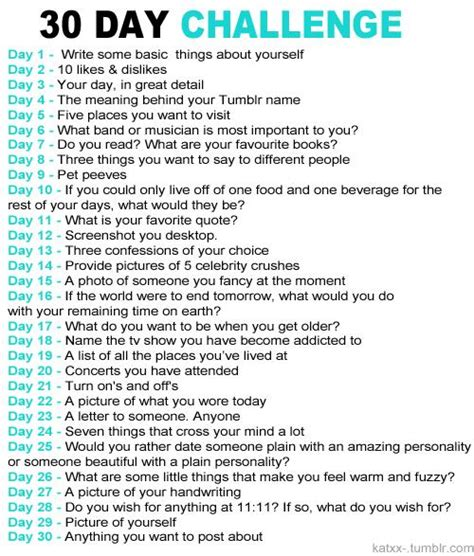 my positivity guide and journal challenge thirty day challenge books 30 day blogging challenge thelissachronicles