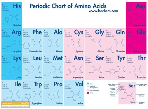 amino acid table 301 moved permanently