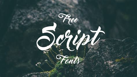 for free 19 free script fonts hipsthetic