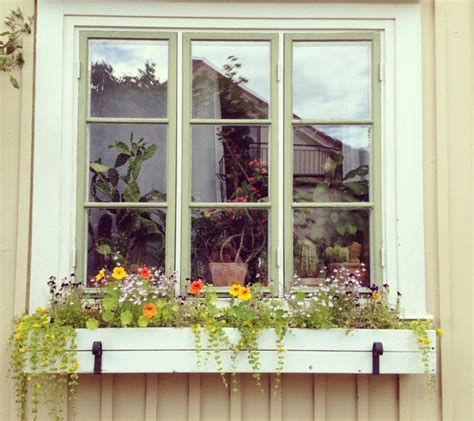 diy window box window box ideas outdoortheme