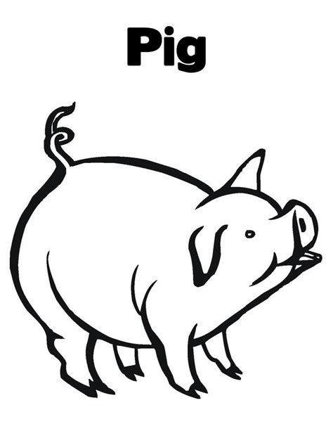 pig coloring page preschool free printable pig coloring pages for kids