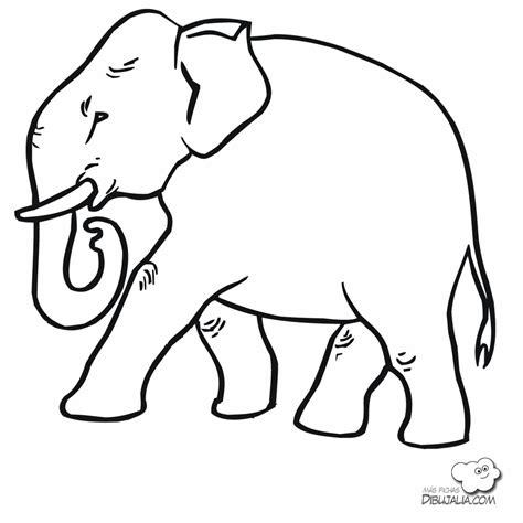 dibujos para colorear im genes para colorear clipart la chachipedia dibujos de elefantes para colorear para