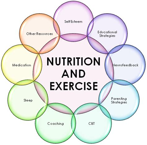 healthy fit and slim understanding the science nutrition exercise and anti aging books nutrition and exercise weight loss