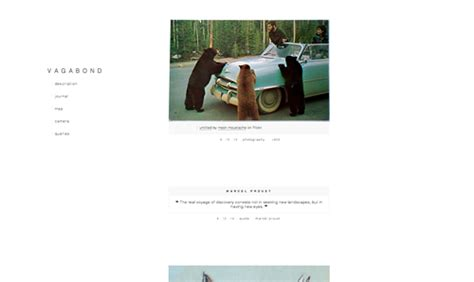 tumblr themes with photo captions grab the themes
