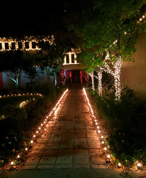 custom christmas net lighting for shruberies pictures string lights dallas landscape lighting
