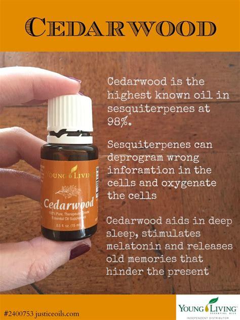 image result for cedarwood essential benefits