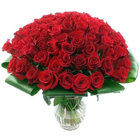 Other Words For Red by 100 Red Roses Flower Delivery In The Uk By Clare Florist