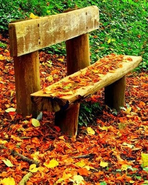 fall bench park bench surrounded by colorful fall leaves