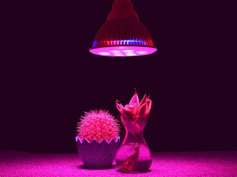 how to use grow lights best led grow lights 2017 reviews guide on the market