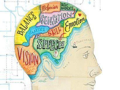 neuroeducacin en el aula todo sobre la neuroeducaci 243 n qu 233 es para qu 233 sirve y c 243 mo aplicarla