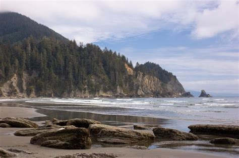 oswald west state park oregon photo oregon parks and