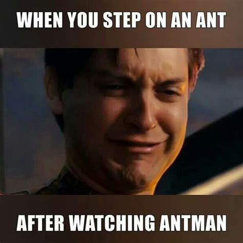 Ant Meme - 75 best hero memes images on pinterest superhero the