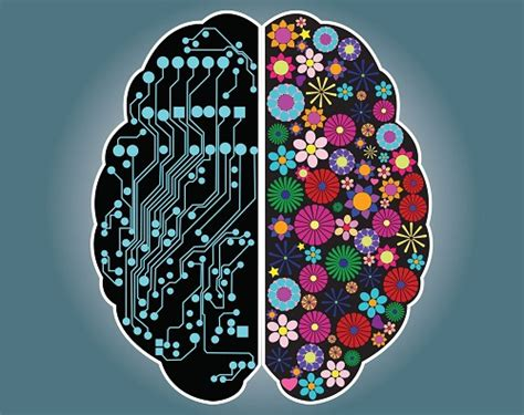 creativity the human brain in the age of innovation books descubre si eres una persona racional o intuitiva mejor