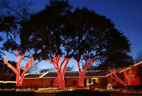 dallas lights wrapped tree lights dallas landscape lighting