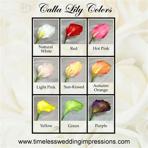 calla lilies colors calla summer wedding flowers white or green