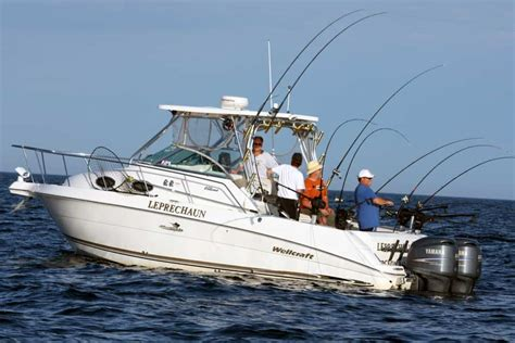 fishing boat charter cost fishing charters boating day trips in costa blanca