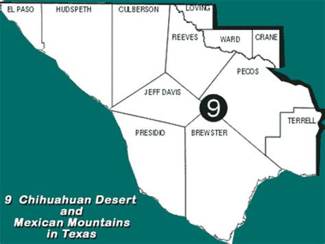 texas desert map tpwd texas partners in flight ecological region 9 chihuahuan desert and mexican mountains
