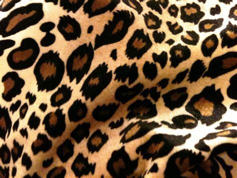 print a wallpaper cheetah backgrounds wallpaper cave