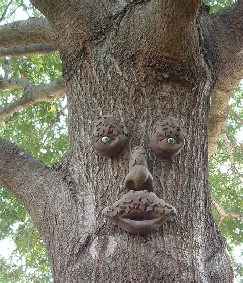 tree face tree art faces mr mapleshade tree face garden art