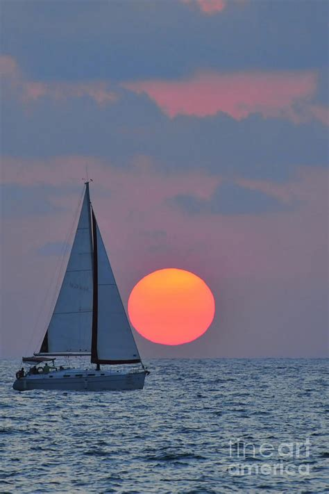 sailboat pictures sailboat at sunset photograph by shay levy