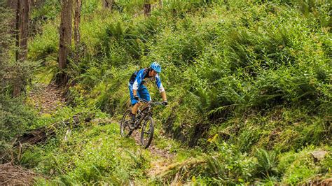 Mountain biking outdoor activities victoria australia