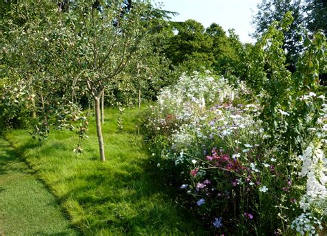 Garden Trees by Cottage Garden Trees