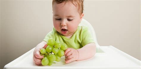 ate grapes grapes for baby food recipes and feeding your baby