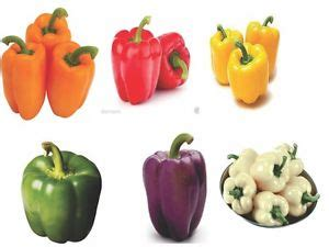 bell pepper capsicum 6 different colors in 1 pack