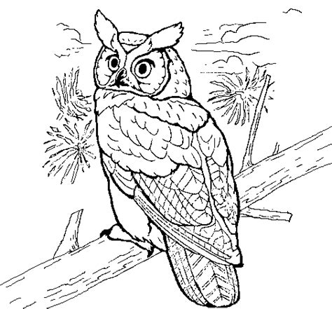 coloring book how great great horned owl coloring page coloringcrew