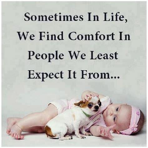 comfort in life least expect it quotes quotesgram