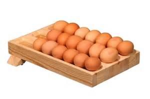 Amazing Kitchen Design Egg N Roller The Egg Storage Holder Rack Home