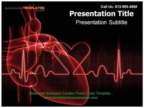 cardiovascular powerpoint template free cardiology powerpoint template briski info