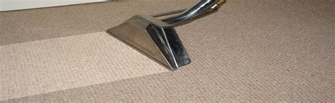 steam rug cleaners palacecarpet carpet steam cleaning