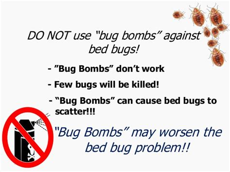 bed bug bombs that work bed bug bombs work 28 images bed bug bombs don t work mag mire small bed bug